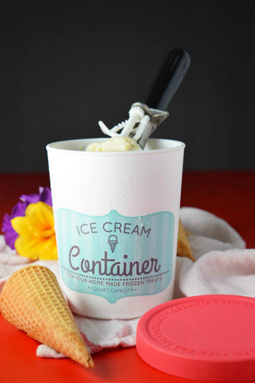 Tres Leches Rice Pudding Ice Cream in Container