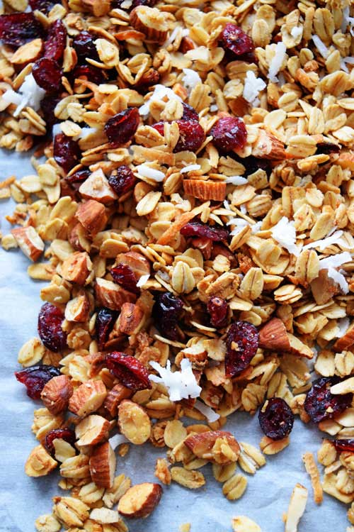 Homemade Cranberry Coconut Granola 1