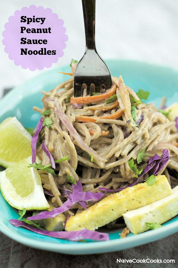 spicy peanut sauce noodles 1 title