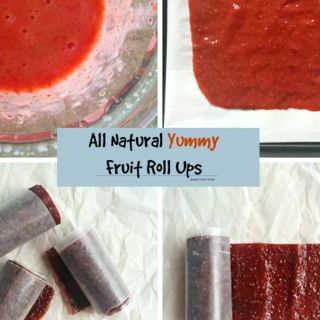 All Natural Fruit Roll Ups